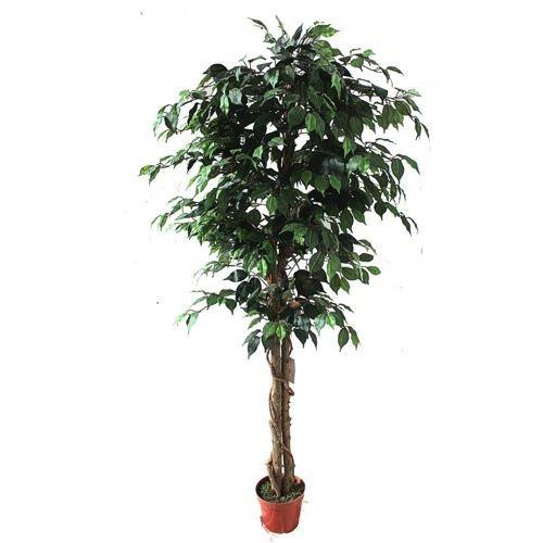 Искусственное растение H180 cm