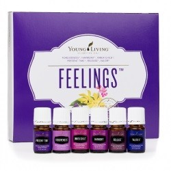 YL Feeling Kit (Чувства)